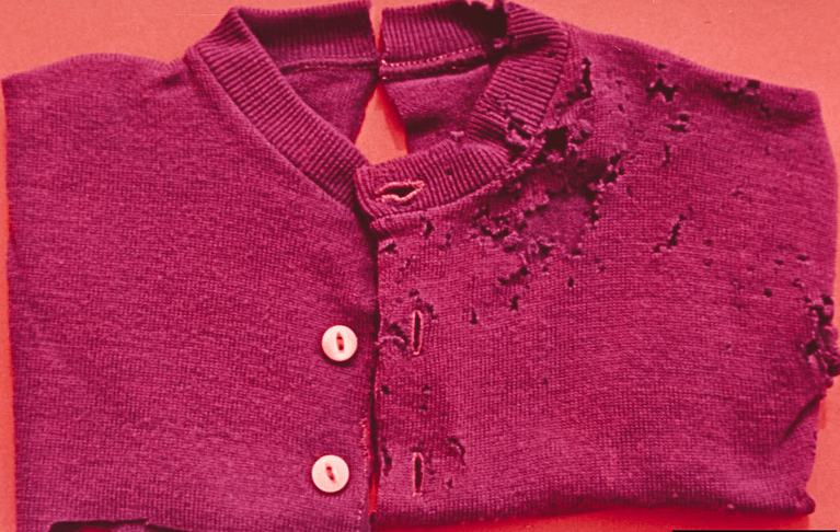Clothes Moth Damaged Clothing