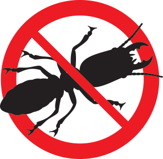 Most Active Pests in Autumn Months