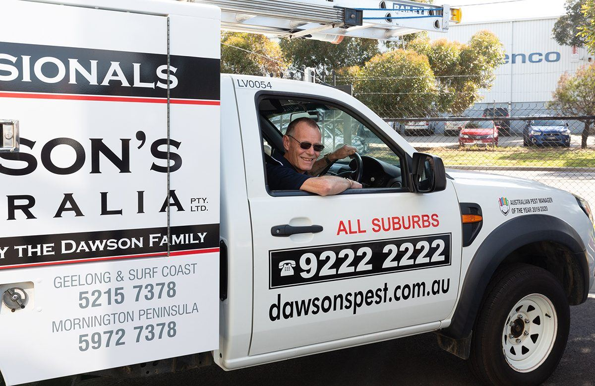 What To Expect When Engaging With Pest Control Services At Dawson's Australia