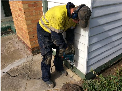 Termite Treatment in Maribyrnong